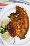 Τηγανητά ψαριών σημείων μαργαριταριών από το Κεράλα Ινδία Στοκ Εικόνες