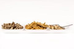 Τηγανισμένα έντομα ακρίδων molitors γρύλων Στοκ φωτογραφία με δικαίωμα ελεύθερης χρήσης