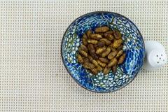 Τηγανισμένα έντομα στο φλυτζάνι Στοκ φωτογραφία με δικαίωμα ελεύθερης χρήσης