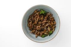 τηγανισμένα έντομα στοκ εικόνα