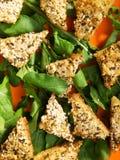 Τηγανισμένα δαγκώματα του ψωμιού με tofu και το σουσάμι στοκ εικόνα με δικαίωμα ελεύθερης χρήσης