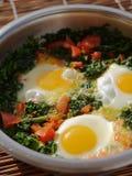 Τηγανισμένα αυγά με το σπανάκι στοκ φωτογραφία