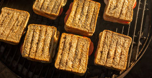 Τηγανισμένα σάντουιτς ντοματών και κρεμμυδιών Στοκ Φωτογραφία