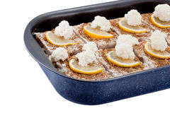 τηγανισμένα ψάρια μανιτάρια & Στοκ εικόνες με δικαίωμα ελεύθερης χρήσης