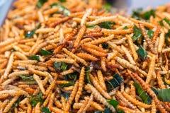 Τηγανισμένα mealworms εντόμων για το πρόχειρο φαγητό στοκ φωτογραφίες