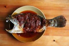 Τηγανισμένα snapper ψάρια με την καυτή σάλτσα τσίλι Στοκ εικόνα με δικαίωμα ελεύθερης χρήσης