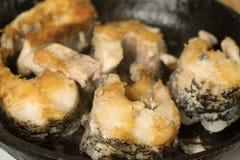 Τηγανισμένες μπριζόλες ψαριών στο τηγάνι Μεγάλα ψάρια λούτσων τηγανητών σε ένα τηγανίζοντας τηγάνι Στοκ Φωτογραφίες