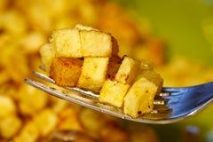 τηγανισμένες πατάτες Στοκ Φωτογραφία
