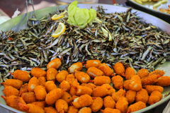 Τηγανισμένες σφαίρες ψαριών με την αντσούγια Στοκ Εικόνα