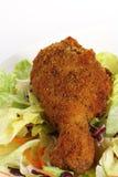 τηγανισμένη κοτόπουλο σαλάτα πιάτων νότια Στοκ εικόνες με δικαίωμα ελεύθερης χρήσης