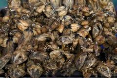 Τηγανισμένοι βάτραχοι για την πώληση στην αγορά Στοκ Εικόνα