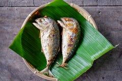 Τηγανισμένος δύο ένσωματωμένα ψάρια σκουμπριών στοκ εικόνες