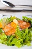 Τηγανισμένος σολομός σε μια σαλάτα κήπων που ολοκληρώνεται με το φρέσκο βούτυρο Στοκ Εικόνες