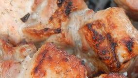 Τηγανισμένος kebab στον ξυλάνθρακα με τον καπνό απόθεμα βίντεο