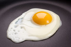 Τηγανισμένο αυγό στοκ φωτογραφία με δικαίωμα ελεύθερης χρήσης