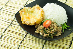 Τηγανισμένο βασιλικός ρύζι (μαξιλάρι-kra-Prao) Στοκ Εικόνα