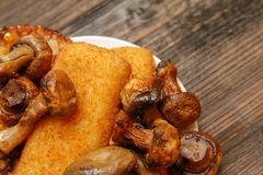 Τηγανισμένο δίχτυ ψαριών, χορτοφάγο burger και ψημένα στη σχάρα champignons στοκ φωτογραφία με δικαίωμα ελεύθερης χρήσης