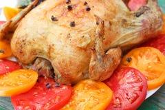 Τηγανισμένο κοτόπουλο με τις ντομάτες σε ένα άσπρο πιάτο Στοκ Εικόνες
