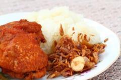 Τηγανισμένο κοτόπουλο με το κρεμμύδι και το κολλώδες ρύζι Στοκ Φωτογραφίες