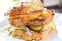 Τηγανισμένο κοτόπουλο Burger της Τουρκίας Στοκ φωτογραφία με δικαίωμα ελεύθερης χρήσης