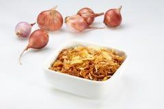τηγανισμένο κρεμμύδι Στοκ φωτογραφία με δικαίωμα ελεύθερης χρήσης