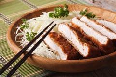 Τηγανισμένο πασπαλισμένο με ψίχουλα tenderloin tonkatsu χοιρινού κρέατος με την κινηματογράφηση σε πρώτο πλάνο λάχανων Hor στοκ εικόνες