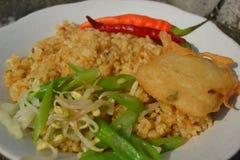 τηγανισμένο ρύζι Στοκ Εικόνα