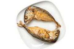 τηγανισμένο ψάρια σκουμπρί Στοκ εικόνες με δικαίωμα ελεύθερης χρήσης