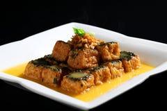 Τηγανισμένο tofu Στοκ Εικόνες