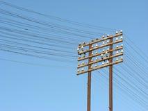 τηλέγραφος γραμμών στοκ φωτογραφία με δικαίωμα ελεύθερης χρήσης