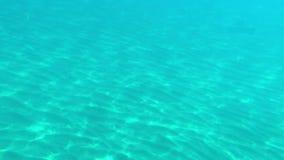 Τηλεοπτικός πυροβολισμός στη θάλασσα με τη βύθιση κάτω από το νερό φιλμ μικρού μήκους