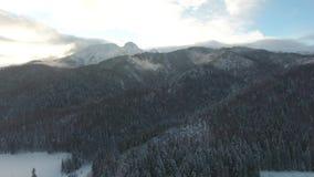Τηλεοπτικός χειμώνας 4k Zakopane Tatry Πολωνία Tatry βουνών της Πολωνίας κηφήνων απόθεμα βίντεο