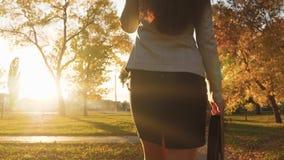 τηλεφωνική ομιλούσα γυν περίπατοι γυναικών στο πάρκο στις ακτίνες του ηλιοβασιλέματος με το μαύρο χαρτοφύλακα για τα έγγραφα απόθεμα βίντεο