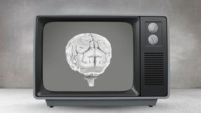 Τηλεόραση με τον περιστρεφόμενο εγκέφαλο στην οθόνη του ελεύθερη απεικόνιση δικαιώματος