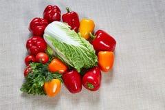 Την ώριμη πάπρικα, λάχανο, ντομάτα γεμίζουν σε έναν καμβά Στοκ Φωτογραφίες