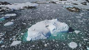 Της Ανταρκτικής τεράστια παγόβουνων άποψη καταδίωξης επιπλεόντων σωμάτων εναέρια απόθεμα βίντεο