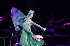 Της Γεωργίας χοροί Στοκ φωτογραφίες με δικαίωμα ελεύθερης χρήσης