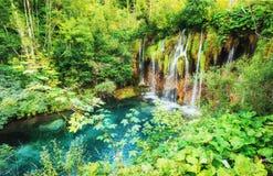 της Κροατίας μειωμένοι τυρκουάζ καταρράκτες plitvice πάρκων λιμνών εθνικοί plitvice της Κροατίας Στοκ εικόνα με δικαίωμα ελεύθερης χρήσης