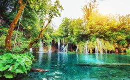 της Κροατίας μειωμένοι τυρκουάζ καταρράκτες plitvice πάρκων λιμνών εθνικοί plitvice της Κροατίας Στοκ Εικόνες