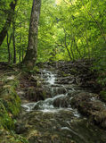 της Κροατίας sostavtsy καταρράκτες plitvice πάρκων λιμνών εθνικοί Κροατία Στοκ φωτογραφία με δικαίωμα ελεύθερης χρήσης
