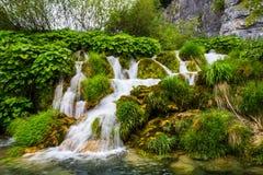 της Κροατίας sostavtsy καταρράκτες plitvice πάρκων λιμνών εθνικοί Στοκ Εικόνες