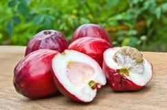 Της Μαλαισίας μήλο Στοκ φωτογραφία με δικαίωμα ελεύθερης χρήσης