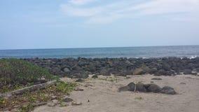 Της Χαβάης ακτή Στοκ Φωτογραφίες