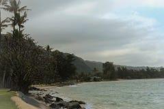 της Χαβάης ακτή Στοκ Εικόνα