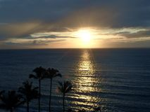 Της Χαβάης ηλιοβασίλεμα με την αντανάκλαση και τους φοίνικες στοκ εικόνες με δικαίωμα ελεύθερης χρήσης