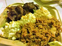 Της Χαβάης μεσημεριανό γεύμα πιάτων χοιρινού κρέατος Kalua στοκ εικόνες με δικαίωμα ελεύθερης χρήσης
