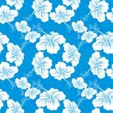 Της Χαβάης πρότυπα απεικόνιση αποθεμάτων
