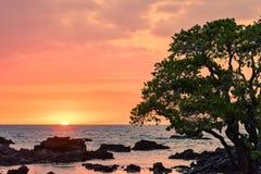 Της Χαβάης πυράκτωση ηλιοβασιλέματος στοκ εικόνα