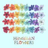 Της Χαβάης σύνολο lei λουλουδιών ουράνιων τόξων ελεύθερη απεικόνιση δικαιώματος