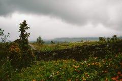 της Χαβάης τοπίο Στοκ εικόνα με δικαίωμα ελεύθερης χρήσης